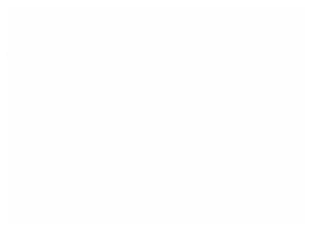 The Zombie Fest